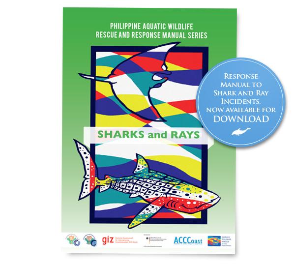 rm-sharksrays